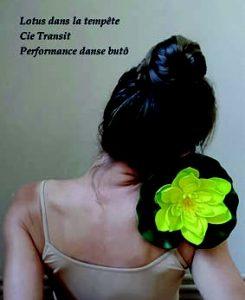 Cie Transit